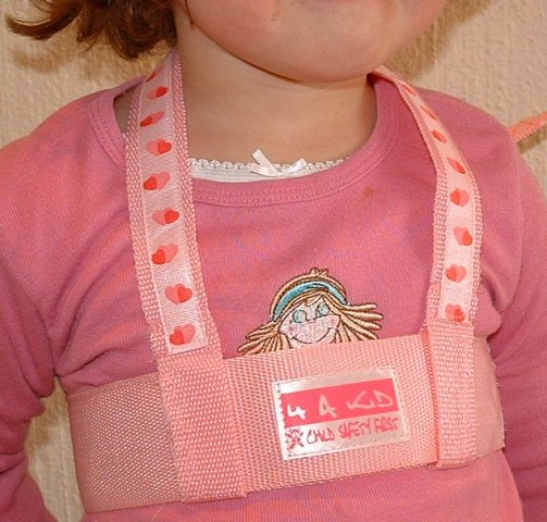 child-safety-harness--pink-or-blue