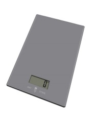 grey-glass-kitchen-scale--ksgoigr
